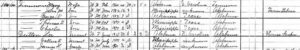 1900 Federal Census, Lawrence County, Alabama: Lee Dutton and sons.